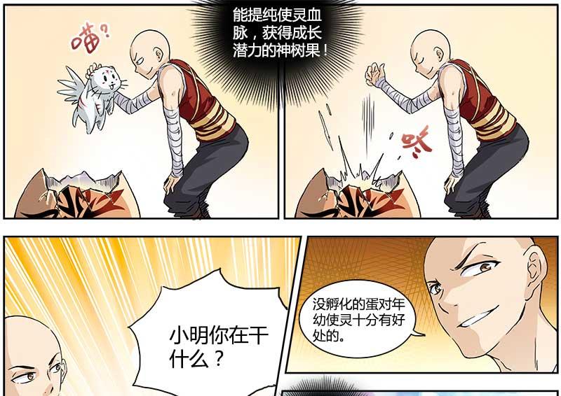 完结版韩漫《驭灵师》大全免费漫画呆全集漫画图片图片